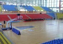<b>篮球场7</b>