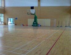 运动木地板11