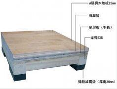 运动木地板12