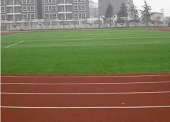人造草坪施工三